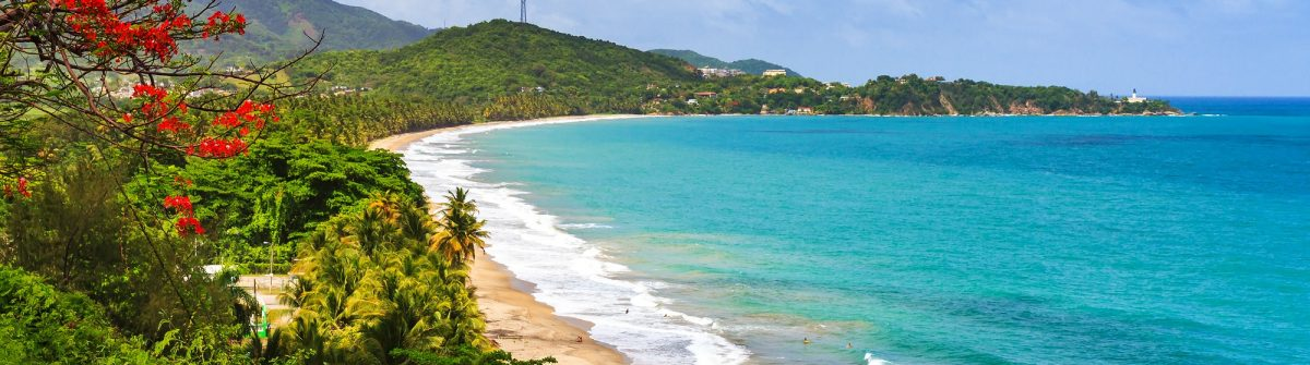 Beautiful-tropical-summer-view-of-Puerto-Rico-with-red-flowers-and-a-white-beach_shutterstock_419173447-klein