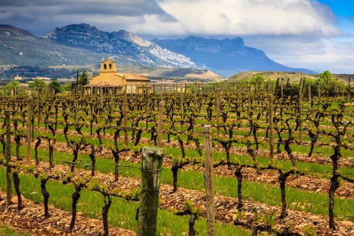 a-traditional-winery-in-rioja-shutterstock_51054961-2
