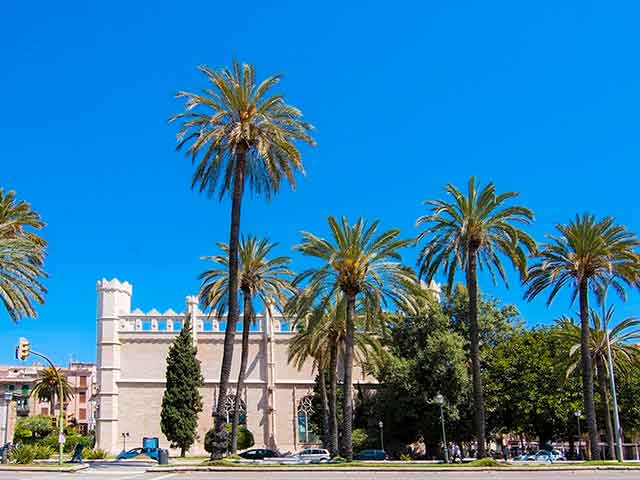 la-llotja-building-and-palm-trees-from-the-paseo-maritimo-in-palma-de-mallorca-shutterstock_466073168-editorial-only-artesia-wells-2