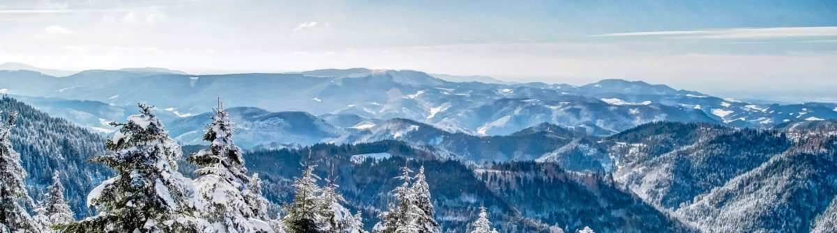 Winter in the Black Forest, Germany