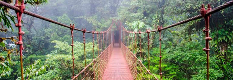 Bridge-in-Rainforest-Costa-Rica-Monteverde_shutterstock_257399221
