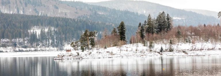 landscape-with-snow-in-cold-winter-in-schluchsee-germany_shutterstock_1507458488
