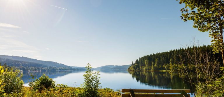 Schluchsee – with bench, Germany