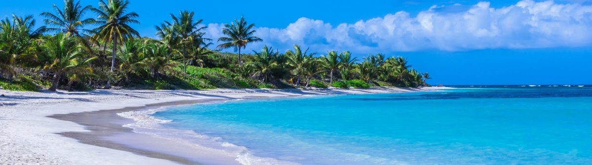 Beautiful white sand Caribbean beach