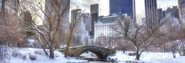 New_York_central_park_shutterstock_170763860