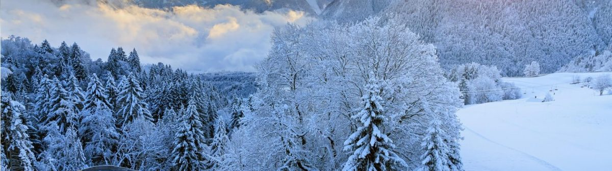 Beautiful-morning-sunrise-view-of-fresh-powder-snow-in-the-mountains-of-the-Brandnertal-in-the-Alps-in-Vorarlberg-Austria_shutterstock_1197804601