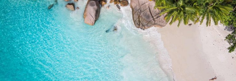 Tropical-beach-with-sea-and-palm-taken-from-drone.-Seychelles-famous-shark-beach_shutterstock_428018086