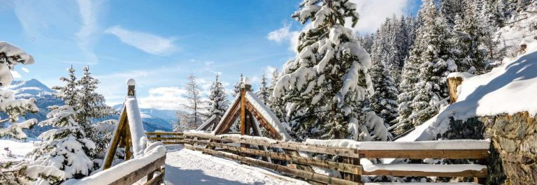 Wood-bridge-at-Panorama-path-above-Davos-Switzerland_shutterstock_445991833