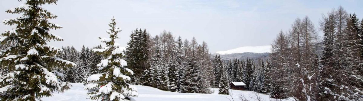 Winter-landscape-on-Monte-Pana-South-Tyrol-Italy_shutterstock_265330106