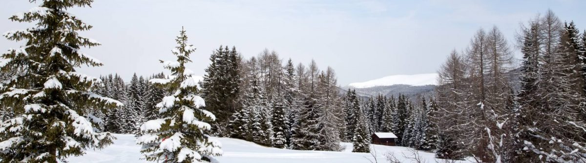 Winter-landscape-on-Monte-Pana-South-Tyrol-Italy_shutterstock_265330106_1920
