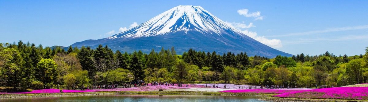 fuji-mount-with-pink-moss-garden-the-famous-place-in-japan-shutterstock_193844243-editorial-only-club4traveler-2-1