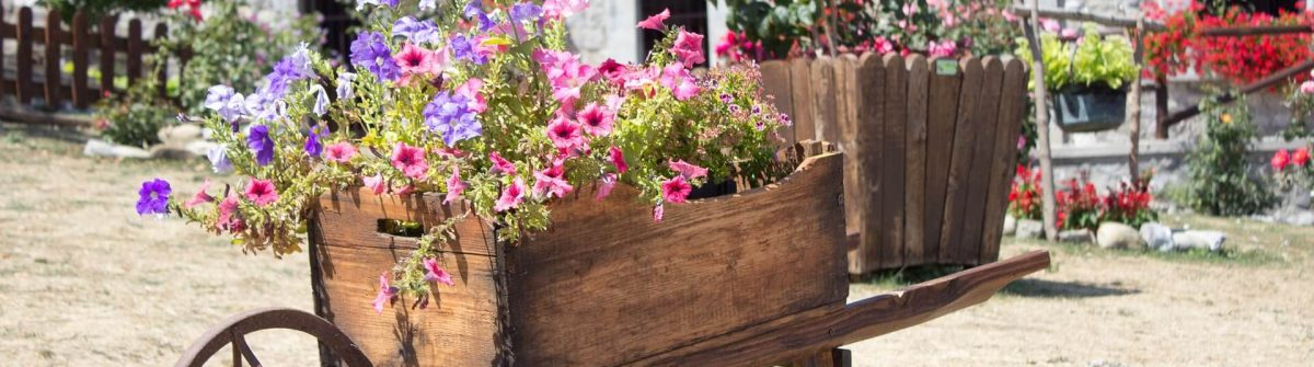 Agriturismo-with-flowers-shutterstock_1116794708
